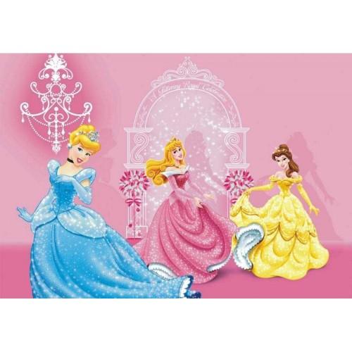Disney Hercegnők pink poszter
