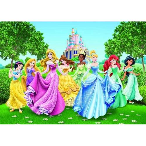 Disney Hercegnők óriás poszter